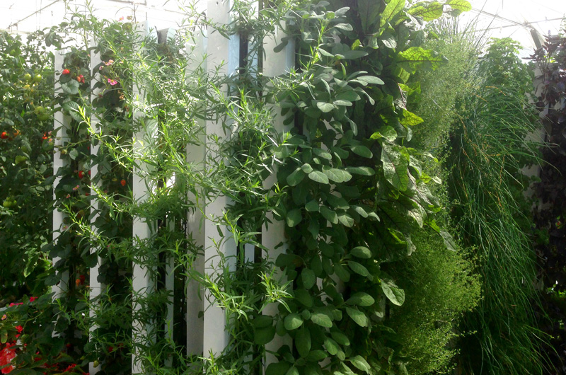 Zipgrow pro, retailers and affiliates